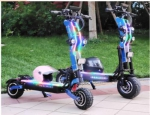 Exclusive brand REALMAX SN-13 PLUS 2 wheels off road electric scooter fat tire