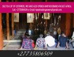 2020 POWERFUL SPIRITUAL HERBALIST HEALER & LOST LOVE SPELLS IN SOUTH AFRICA +27735806509