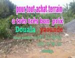 Achat de terrain à douala et Yaounde