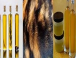 Professional in selling Sandawana Oil and Skin in South Africa +27838588197