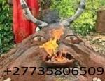 TOP BEST SPIRITUAL HERBALIST HEALER/ LOST LOVE SPELLS/ LOTTERY SPELLS +27735806509