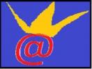 royal système, Boutiques en ligne , Yaounde - Cameroon